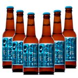 Pack-6-BrewDog-Punk-IPA---330-ml